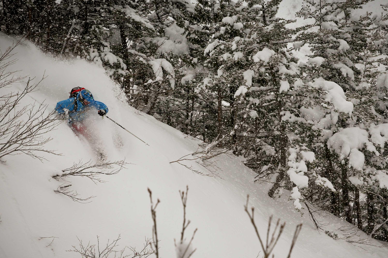 Honshu Japan for ski resorts and holidays