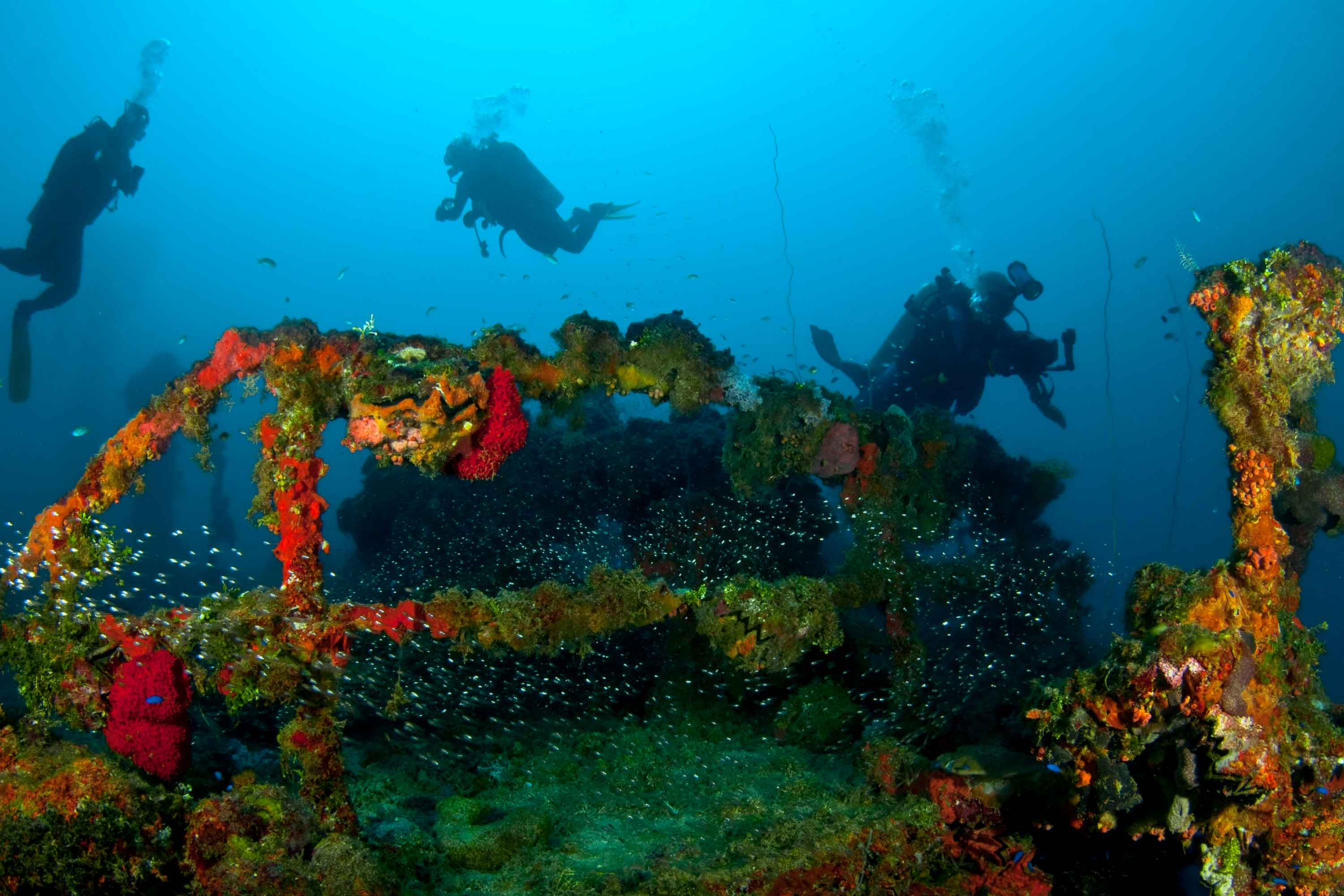 Dive holiday to Chuuk Lagoon Micronesia