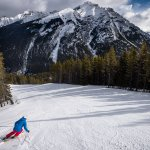 Skier on the slopes Mt Norquay