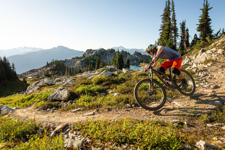 Whistler Bike