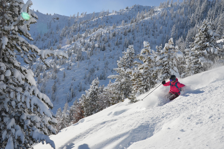 ski & board holidays and travel panorama canada   travel&co.