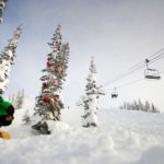 Skiing between trees Revelstoke