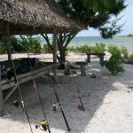Fishing rods CXI