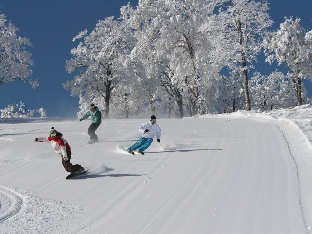 Skiers and boarder at Nozawa Onsen
