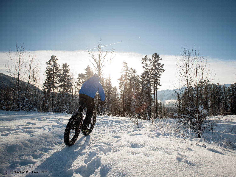 Ride a Fat Tyre Bike