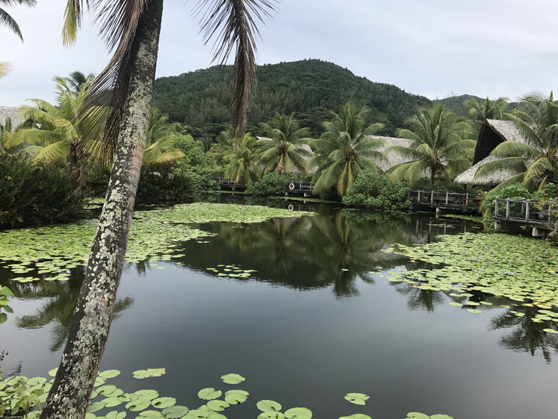 French Polynesia best kept secret Huahine