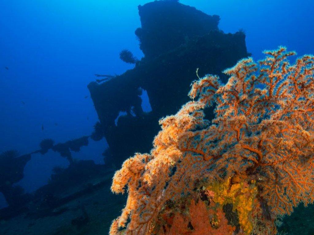 Cargo trading vessel dive site