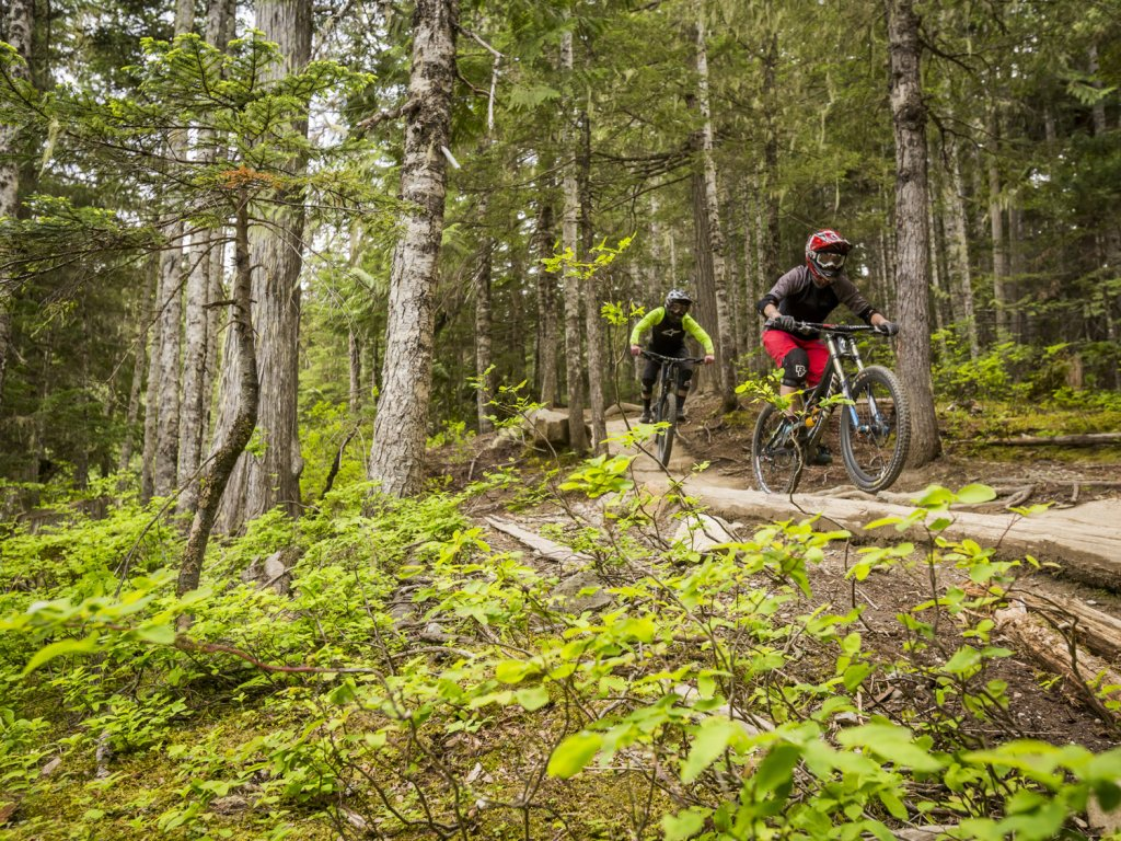 Whistler Mountain Bike Park is perfect for you and your friends