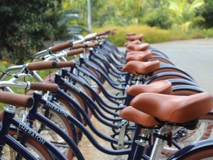 Cycle New Caledonia