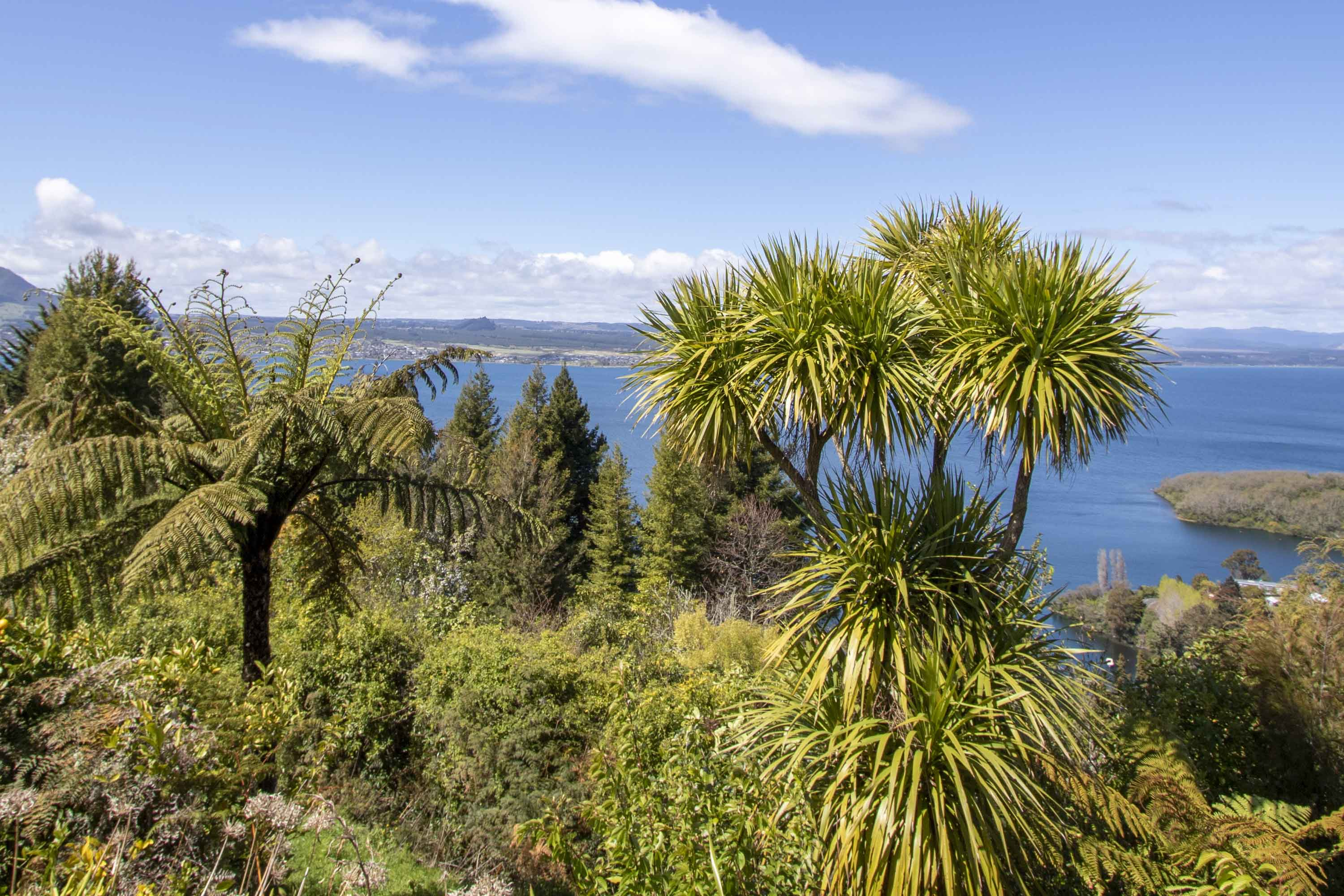 Taupo Wellness Retreat